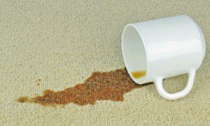 Getting the Most from Commercial Carpet Cleaning Services