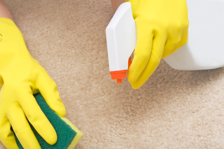 Spot Cleaning Tips