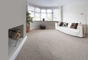 Residential Carpet Cleaning in Longwood, Florida