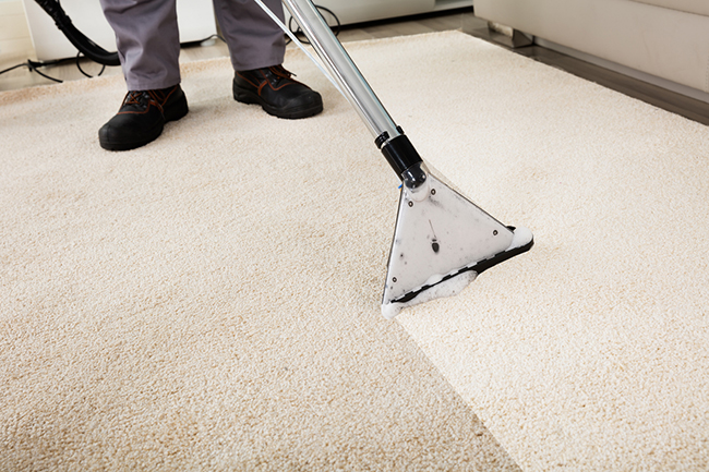 Professional Carpet Cleaning vs. DIY Carpet Cleaning